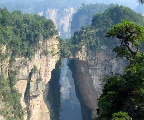 1 Day Aatar Tour to Golden Whip Brook-Yuanjiajie-Tianzi Mountain