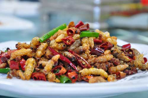 A Bite of Zhangjiajie-Tujia Fried Bee Pupa