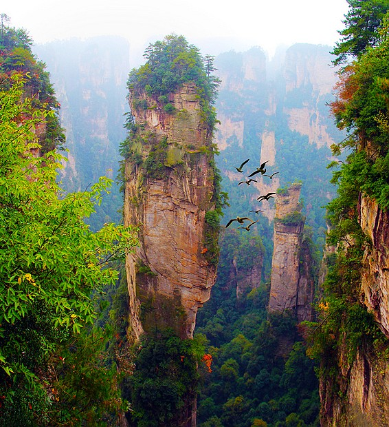 12 Days China Package tour for Zhangjiajie and Xi'an