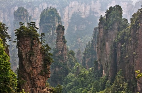 The Collection of Zhangjiajie Tourism Entrance Fee