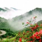 hunan Mount Dawei Park 6