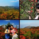 hunan Mount Dawei Park 10