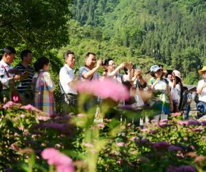 China Tourism Day,Tourists give a thumb to Huanglongdong free scenic area