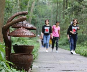 "Zhangjiajie ""Art Trash"" presented in the core scenic spot"