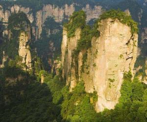 21 Consulates from Hong Kong and Macao visited Zhangjiajie