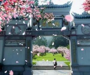 Hunan Top Scenic Spots Ticket Prices Decreased