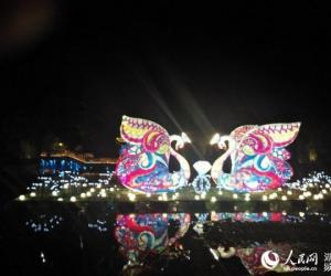 Peach Blossoms Themed Light Festival Opened in Changde