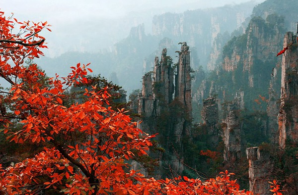 Zhangjiajie Autumn Scenery is beautiful?
