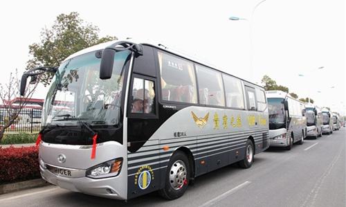 tour bus2.jpg